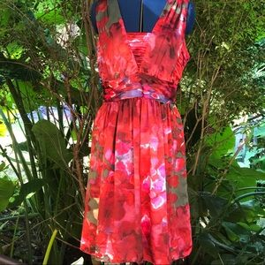 Banana Republic | Red Silk Dress